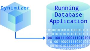Dynimizer for Server Performance