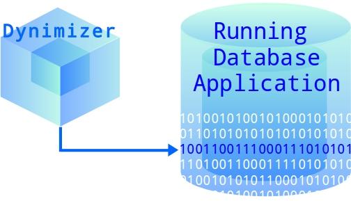 Dynimizer for Server Performance