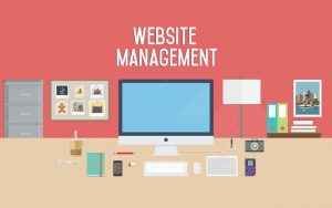 Website Management Monthly