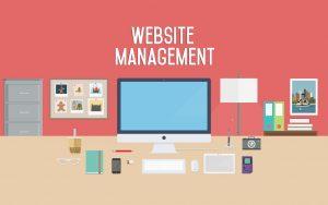 Website Management Monthly